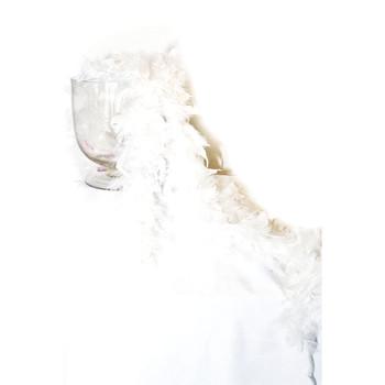 White Boa