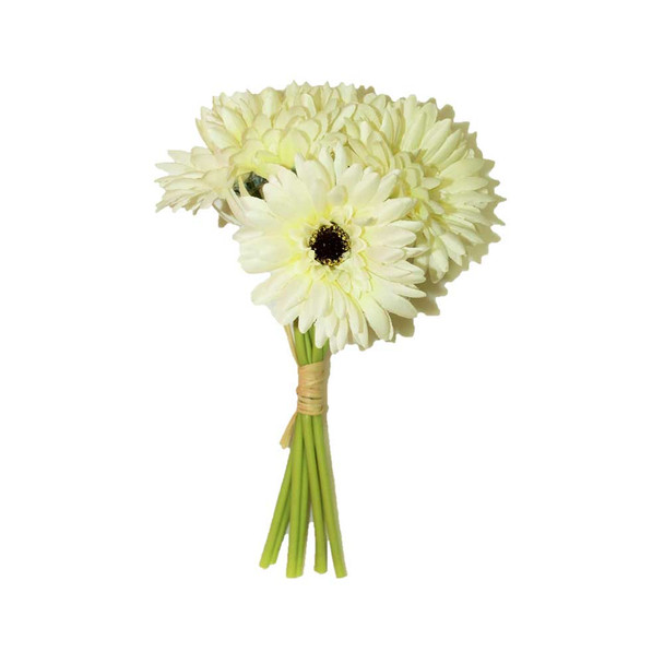 "10"" Bunch Gerber Daisy, 7 Stems. White"
