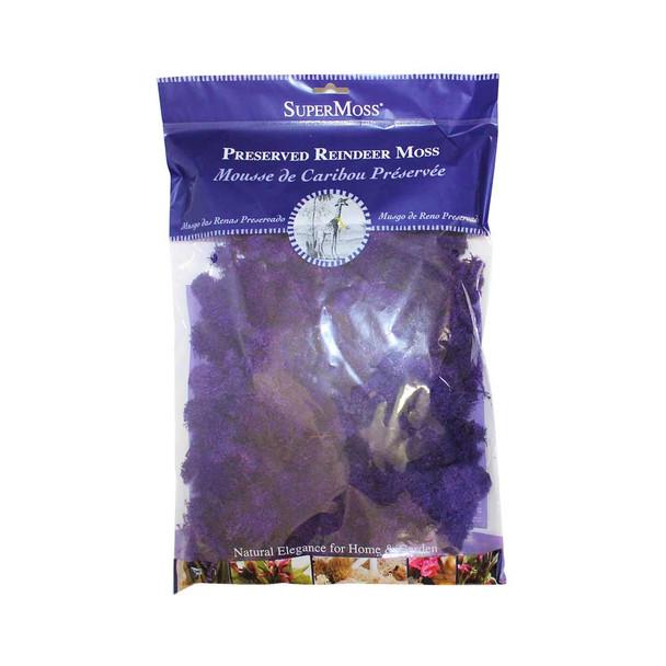 Purple Preserved Reindeer Moss