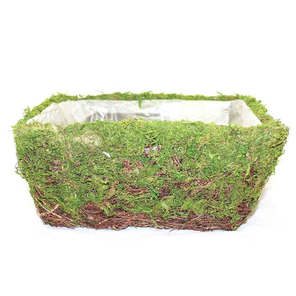 Square Moss Basket With Rattan