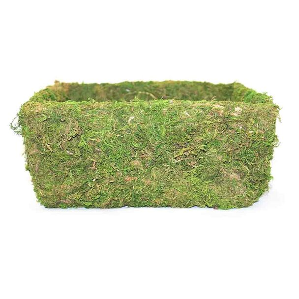 55170 Rectangle Moss