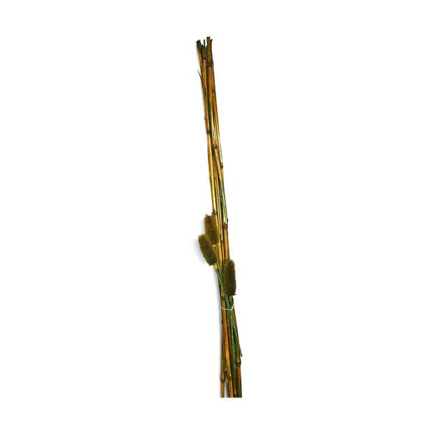 "48"" Green Bamboo Bunch"