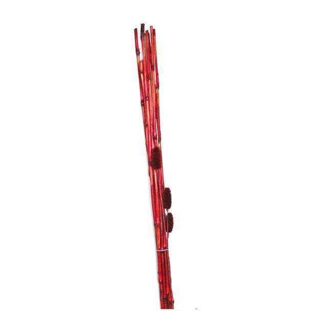 """48"""" Burgundy Bamboo Bunch"""