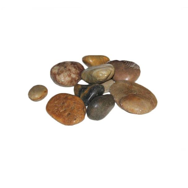 2 lb  Mixed River Rocks