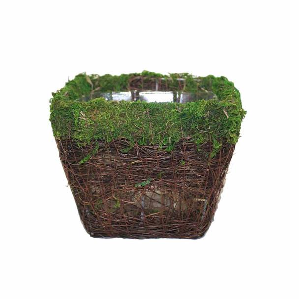 """7"""" Square Moss Planter"""
