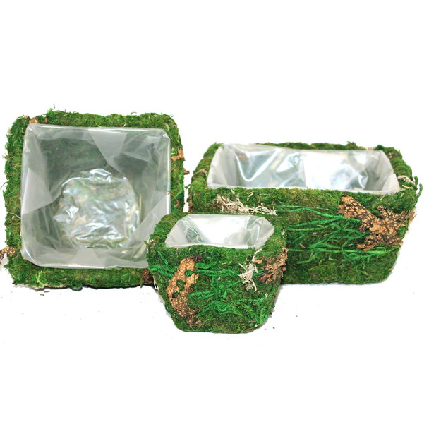 Square Moss and Bark Basket Planters Set of 3