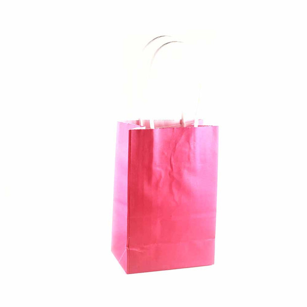 6''H Fuchsia Small Paper Gift Bags 12 pieces
