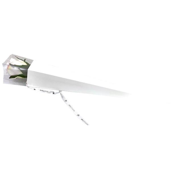 "25"" White Single Stem Floral Cone -10 Pieces"