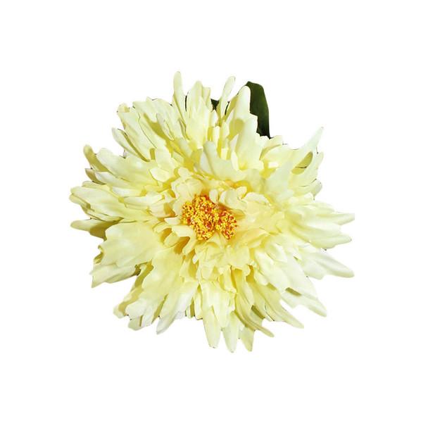 Ivory Single Long Stem Chrysanthemum