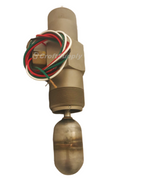 "Electric Level Switch, 2"" NPT Connection, BMD, LC20E-CT1"