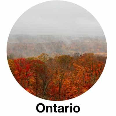 Ontario Fire Code Link