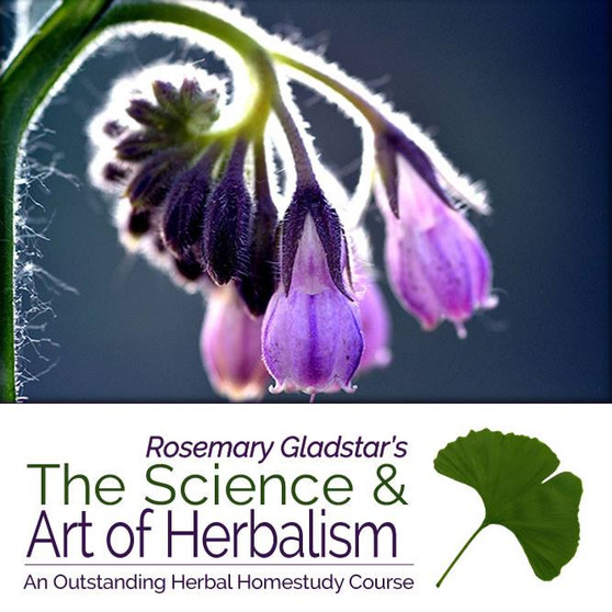 The Science & Art of Herbalism - Payment Plan (2+3)