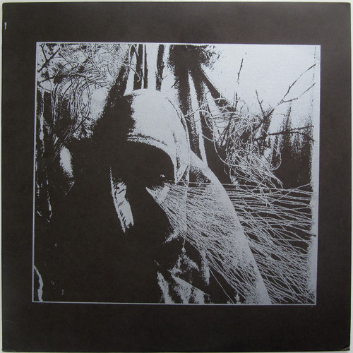 Chasing Voices  - Acidbathory (silkscreened cover)