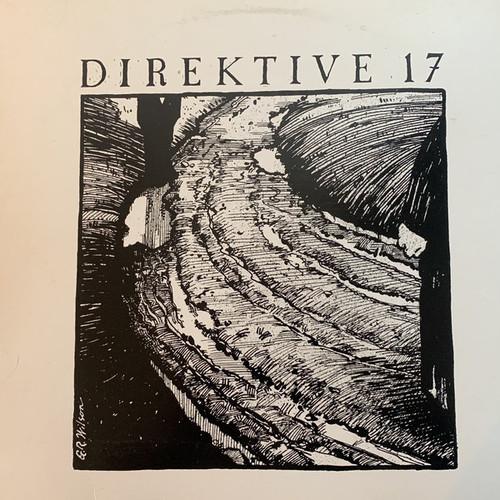 Direktive - 17