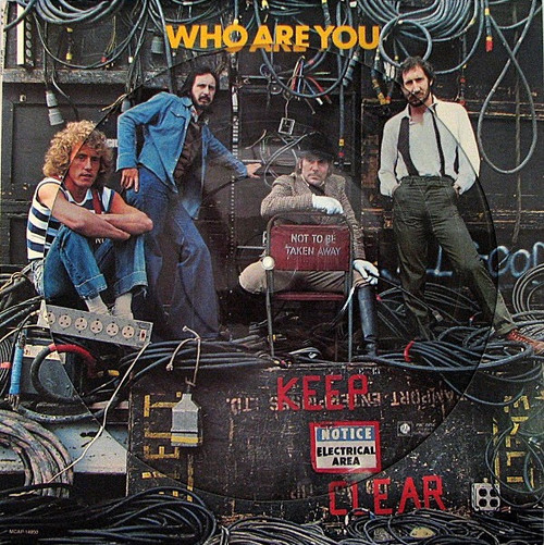 The Who - Who Are You (US 1978 Picture Disc)