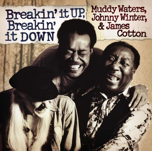Muddy Waters - Breakin' It Up, Breakin' It Down ( Limited Edition NM/NM)