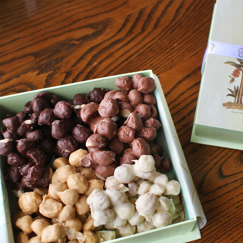 Chocolate Covered Macadamia Nuts - One Pound