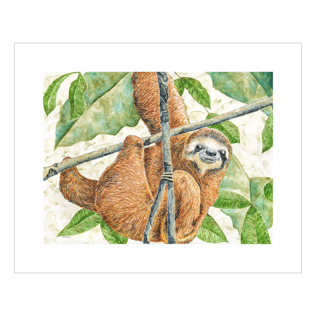 sloth-2020