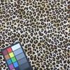 cheetah print tan brown