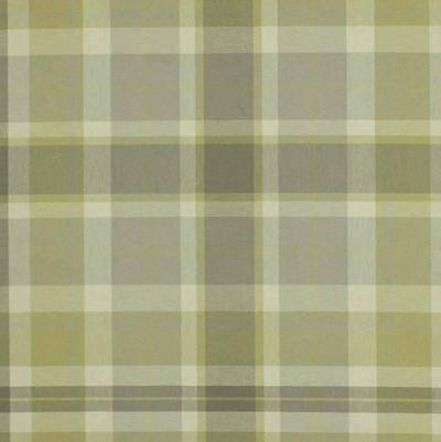 Robert Allen DONNYGLEN  CITRINE UPHOLSTERY Fabric