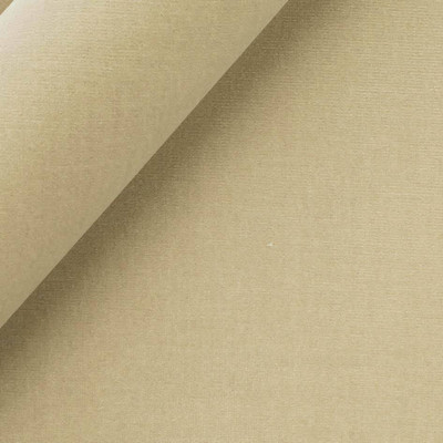 Robert Allen LADY ELSIE FAWN UPHOLSTERY Fabric