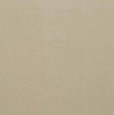Tan Velvet Fabric Upholstery Robert Allen Luxe Look Sand