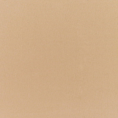 CANVAS CAMEL    Furniture Weight Fabric   54 Wide   By The Yard   5468-0000