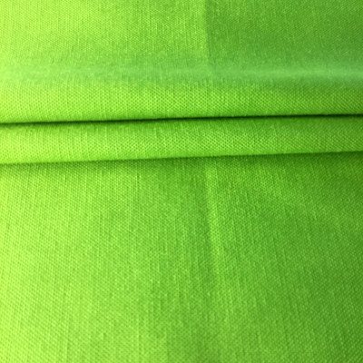 Spring Green   Indoor / Outdoor Fabric   Upholstery / Drapery   54 Wide   By the Yard