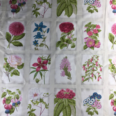 """Flower Study in Green, Pink, Blue, White 