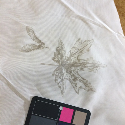 """Off White with Oak Leaves   Sheer Drapery Fabric   60"""" Wide   By the Yard"""