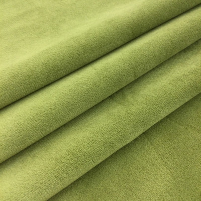 """Avina in Chive by Richloom 