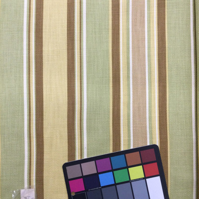 """Stripeway in Mangrove 