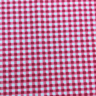 """Gingham in Fuchsia 