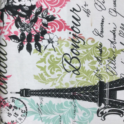 """Paris Travel Damask in Green / Pink / Blue / Black 