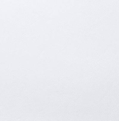 Seaquest White Ice Marine Vinyl Upholstery Fabric