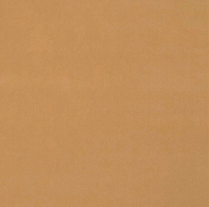 3.3 Yard Piece of Tan Velvet Fabric Upholstery Luxury Robert Allen FOREVER VELVET CAMEL