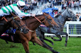 The 2019 Epsom Investec Derby, Our Local Racing