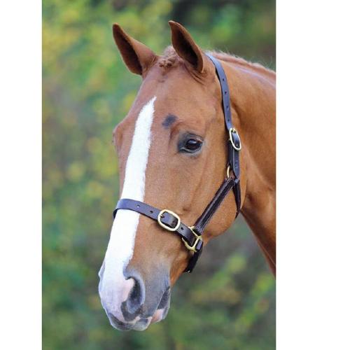Shires Blenheim Adjustable Leather Headcollar