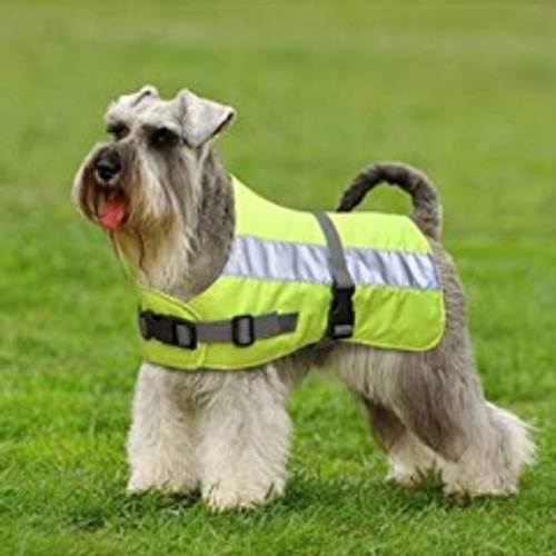 Petlife Flecta High Visibility Dog Jacket