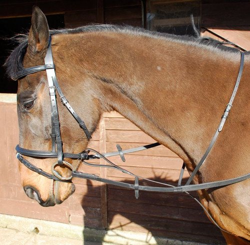 Windsor Standing Leather Martingale
