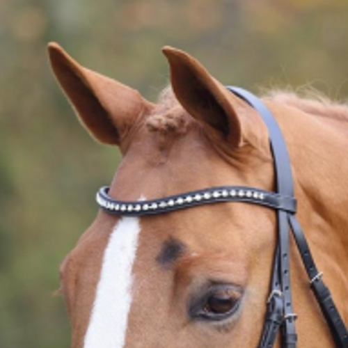 Shires Equestrian Aviemore Large Diamante Browband