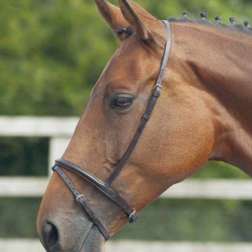 Blenheim Flash Noseband