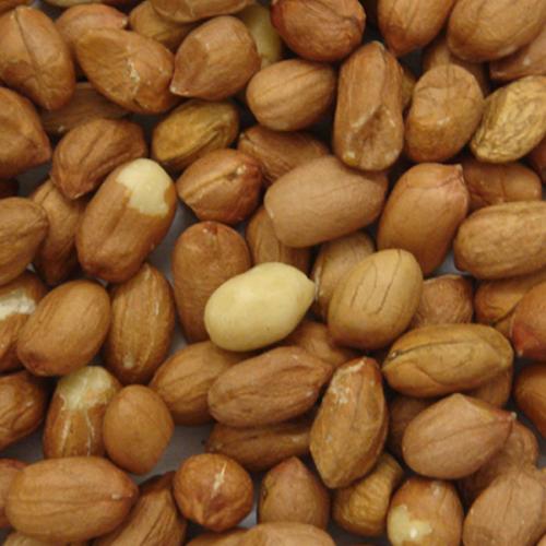 Colonels Peanuts