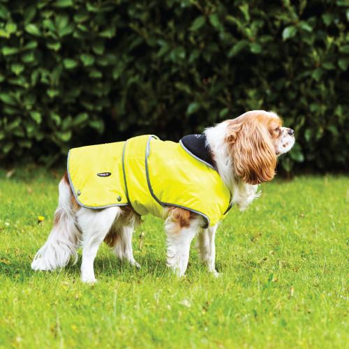 Ancol Stormguard Hi-Vis Dog Coat
