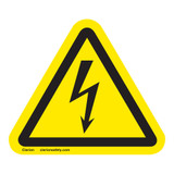 Electrical Shock/Electrocution Label (IS6010-)