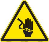 Electrical Shock/Electrocution (FIS1023-)
