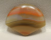 Brazilian Piranha Agate Cabochon Fan Shaped Gemstone #4