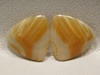 Brazilian Piranha Agate Matched Pair Cabochons Designer Gemstone #7