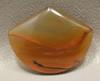 Brazilian Piranha Banded Agate Cabochon Shield Shape #15
