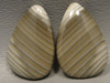 Polish Flint Matched Pair Stone Cabochon Semi Precious Designer Gemstone 10